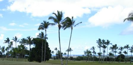 Hilo Bay from Hilo Golf course
