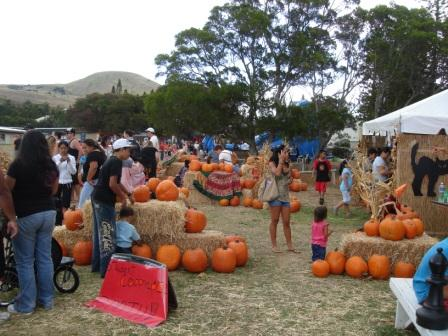 Hawaiian pumpkin patch festival